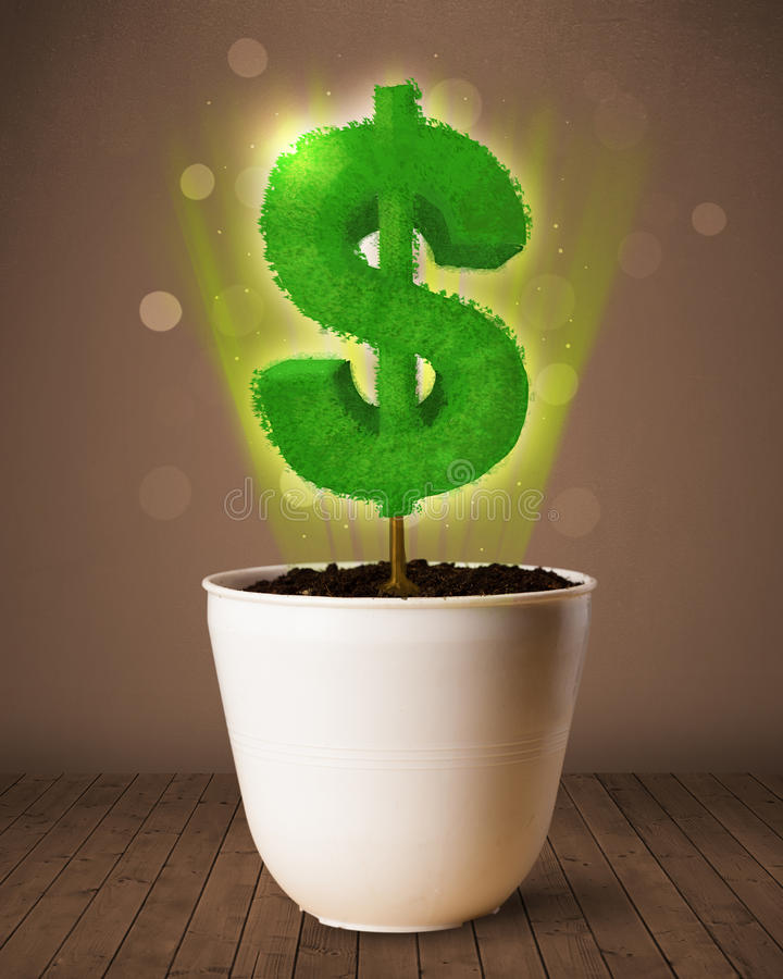 Dollar sign tree coming out of flowerpot. Shining dollar sign tree coming out of flowerpot stock photography