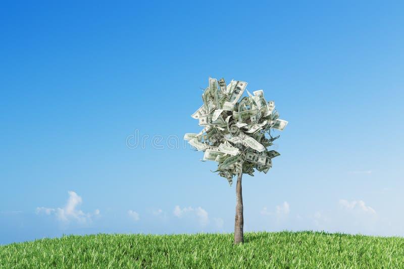 Dollarboom in een pot, weide het 3d teruggeven stock illustratie