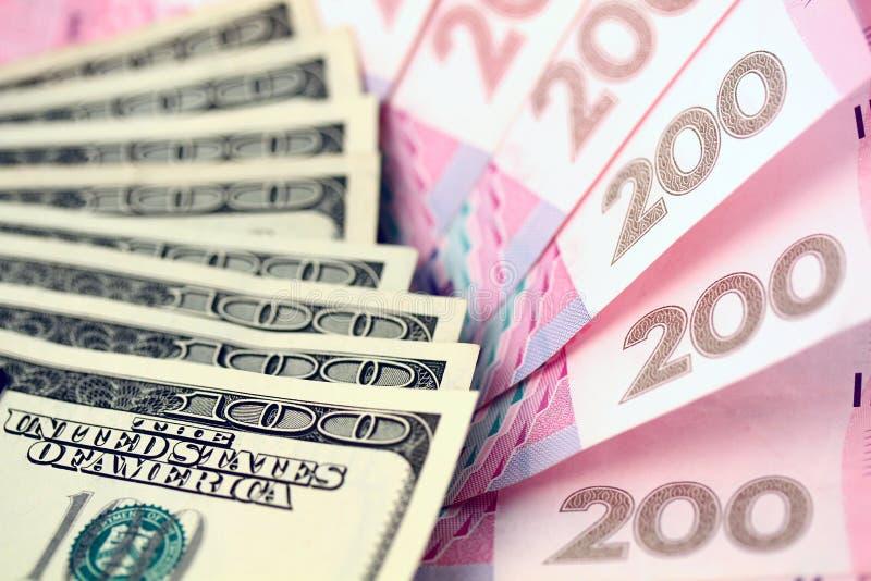 Dollari americani e grivna ucraino fotografia stock