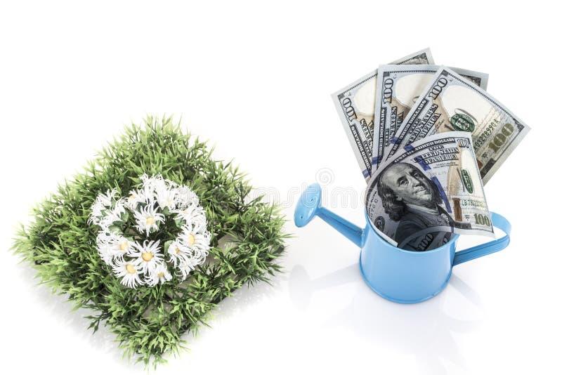 Dollari americani per le spese di giardinaggio fotografia stock