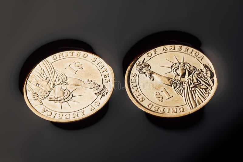 dollarmynt i råoljan royaltyfria foton