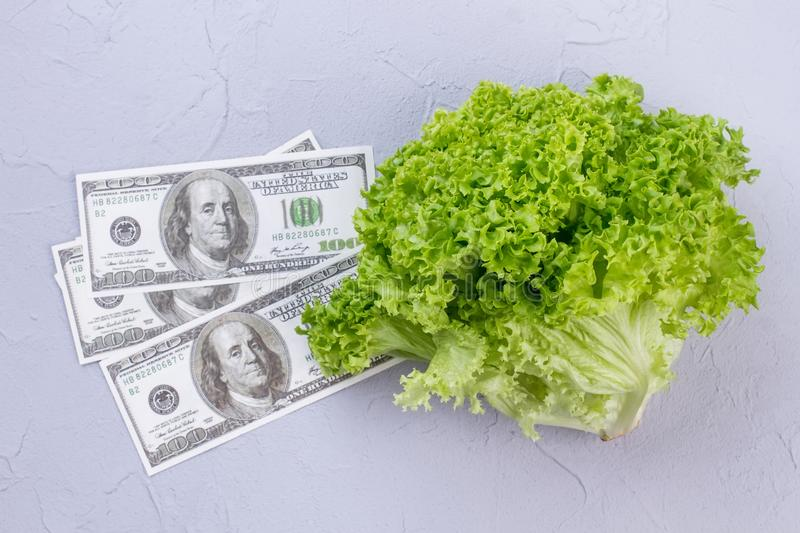 Dollars banknotes and fresh lettuce. royalty free stock photo
