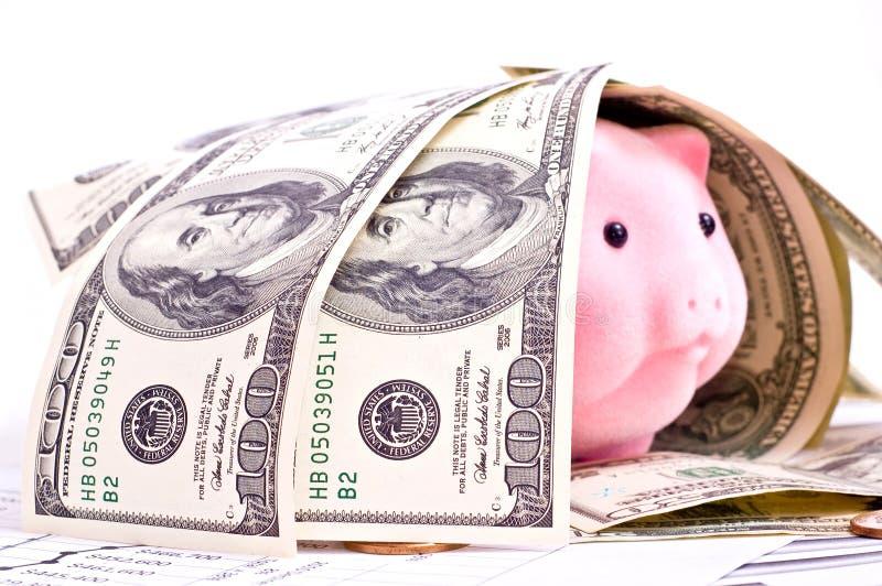 Dollars et porc photographie stock