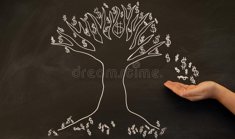 Dollars from money tree. On blackboard with hand catching money stock photo