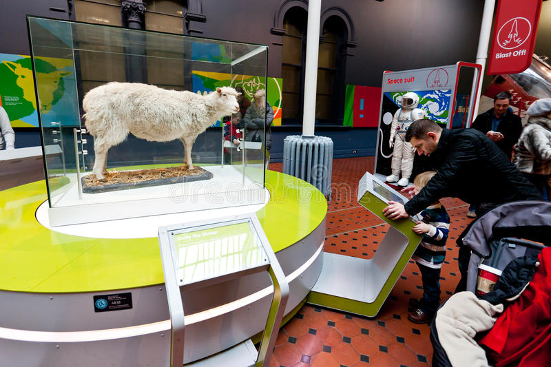Dolly -National Museum of Scotland royalty free stock photo