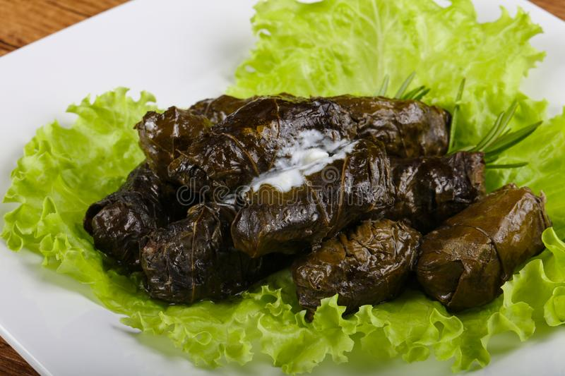 Dolma royalty free stock image