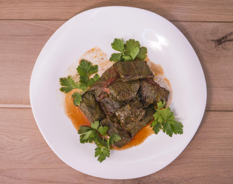 Dolma. Image of white plate with dolma on wood backgraund macro stock images