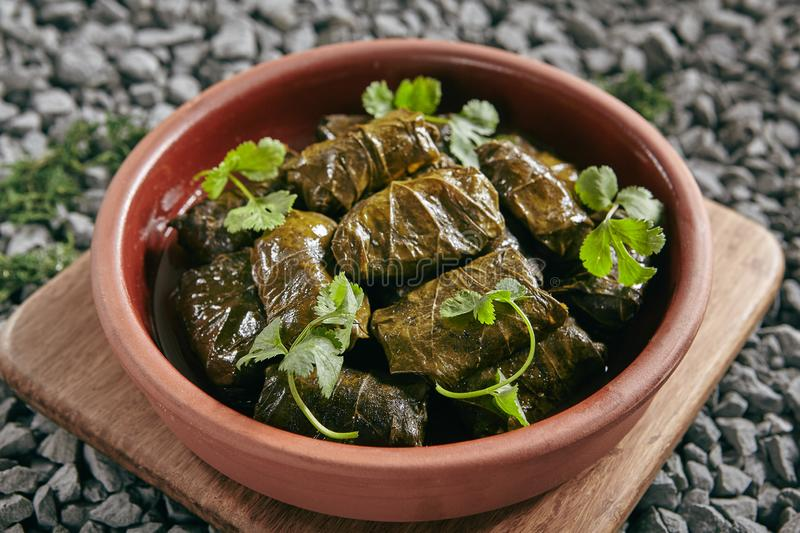 Dolma, Sarma, Dolmades, Dolmadakia or Tolma Close Up. Dolma, Sarma or Dolmades Stuffed with Lamb and Rice Close Up with Selective Focus. Homemade Dolmades royalty free stock images