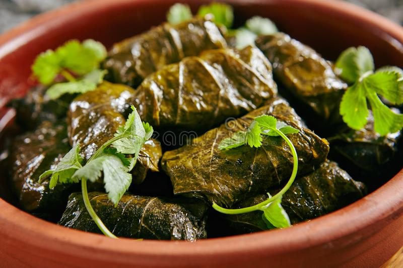 Dolma, Sarma or Dolmades Stuffed with Lamb and Rice. Close Up with Selective Focus. Homemade Dolmades, Dolmadakia or Tolma with Mutton Meat and Marinated Vine stock photography