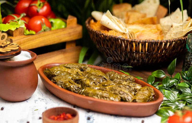 Dolma tolma, sarma - stuffed grape leaves. stock photos