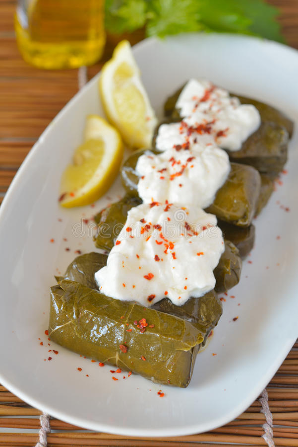 Dolma with yogurt royalty free stock image