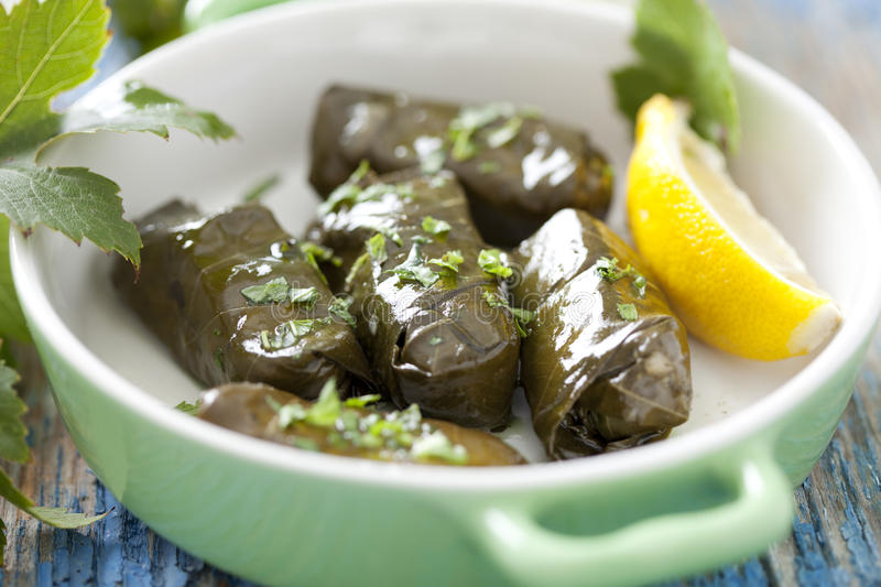 Dolmades stock images