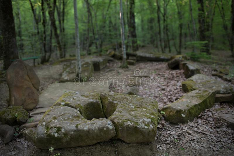 Dolmen i skogen arkivbild