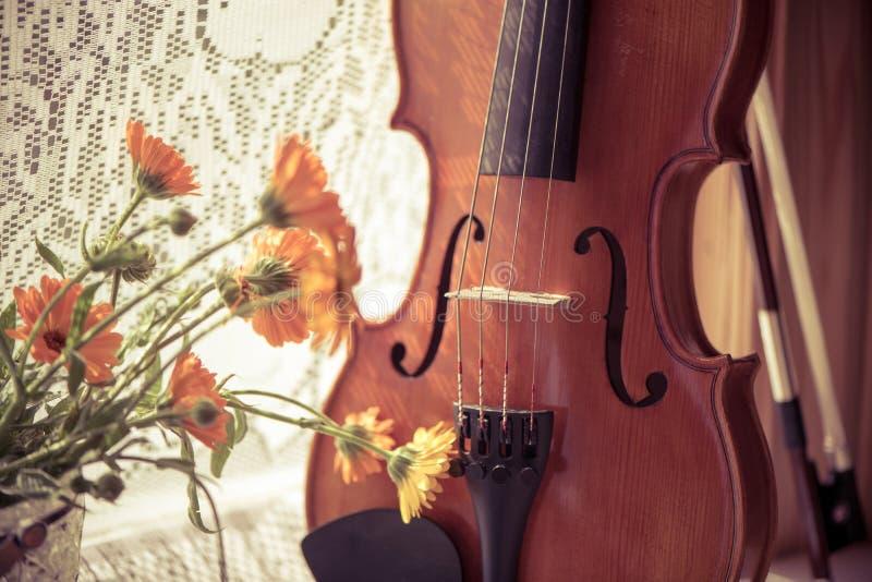 Dolny hHorizontal wizerunek skrzypce i kwiaty zamykamy w górę okno tła na Rocznik stonowana fotografia obrazy royalty free