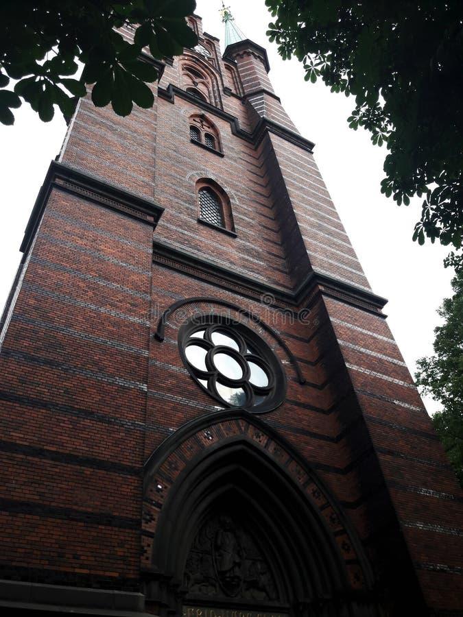 Dolny widok historyczny budynek w Sztokholm z kolorowym zielonym drzewem stary zbudowa? zdjęcia royalty free