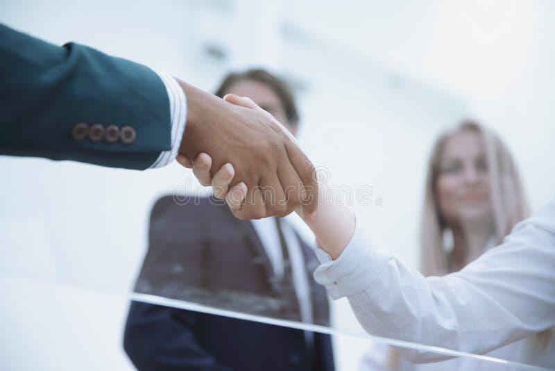 Dolny widok uścisk dłoni biznesowe kobiety z partnerem biznesowym fotografia stock