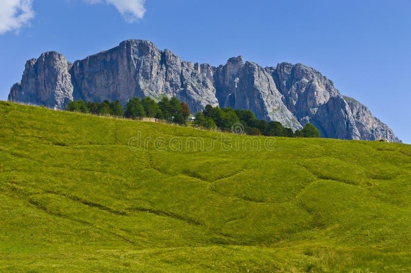 Dolomías, el Stevia del montaje - Italia foto de archivo libre de regalías