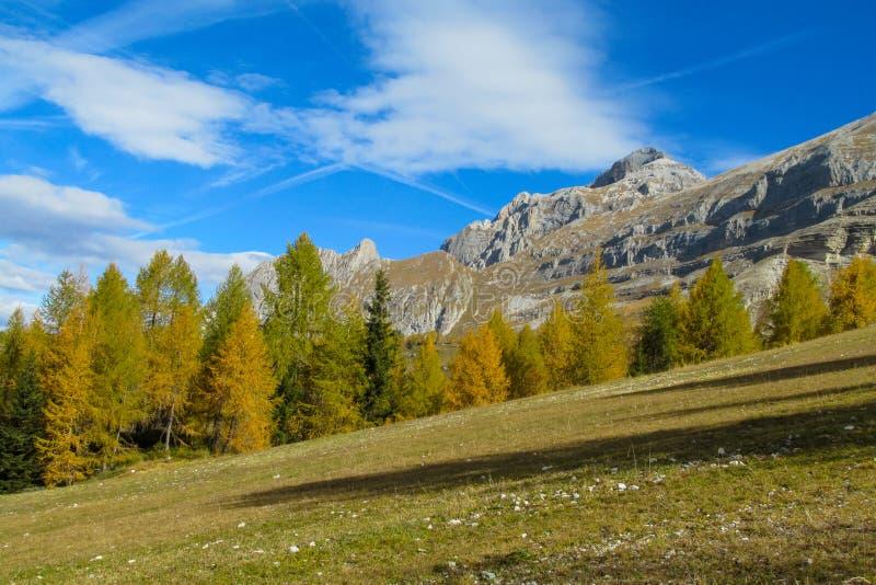 Dolomitberge im Herbst mit gelben Bäumen stockbild