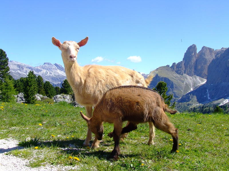 Download Dolomites stock photo. Image of country, background, countryside - 12590298