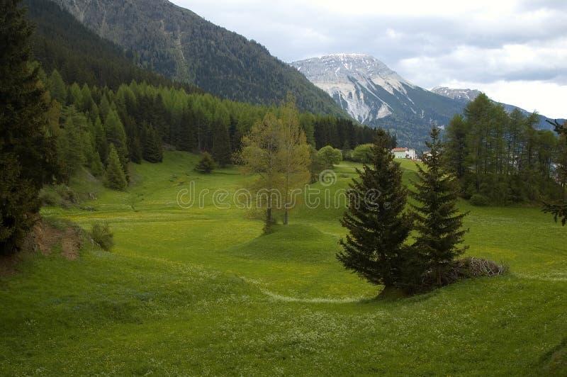 Download Dolomites Stock Image - Image: 914151