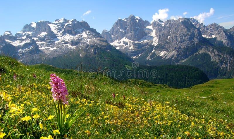 Dolomites Italie images libres de droits