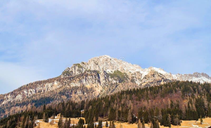 Dolomitesna av det Trentino vinterlandskapet royaltyfria foton
