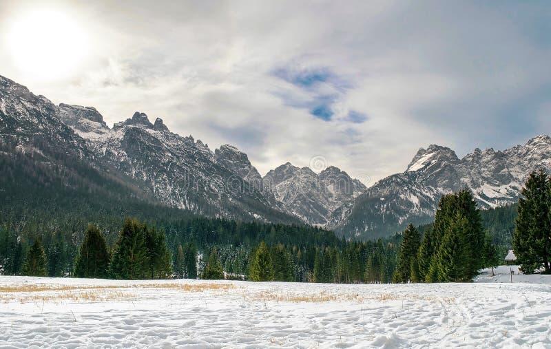 Dolomitesna av det Trentino vinterlandskapet arkivfoton