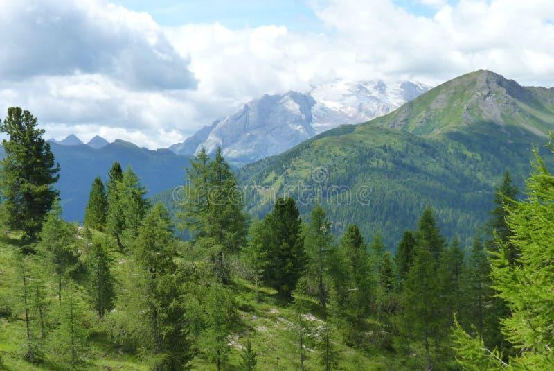 Dolomiti Άλπεων στοκ φωτογραφία με δικαίωμα ελεύθερης χρήσης