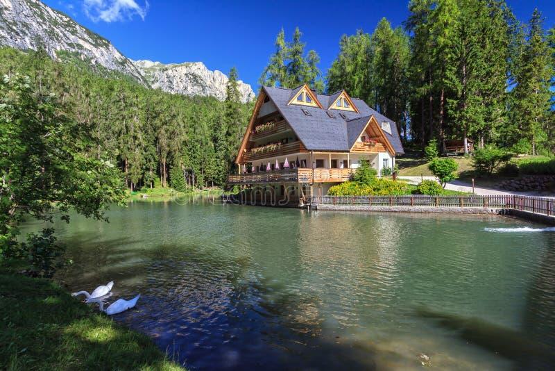 Dolomiti - lake of Sompunt stock image