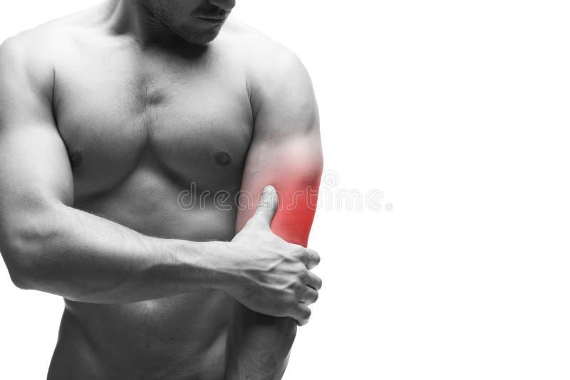 Dolor en el codo Carrocería masculina muscular Aislado en el fondo blanco con el espacio de la copia foto de archivo