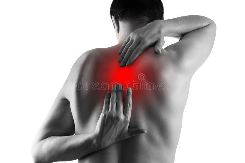 Dolore alla schiena, sofferenza dell'uomo dal mal di schiena isolato su fondo bianco immagine stock