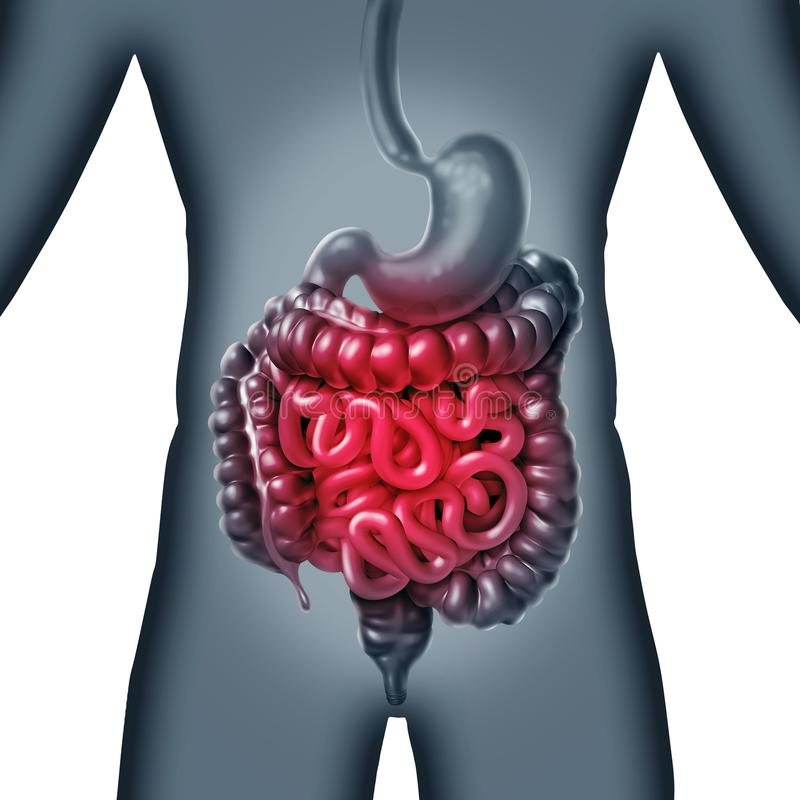 Dolore intestinale illustrazione vettoriale