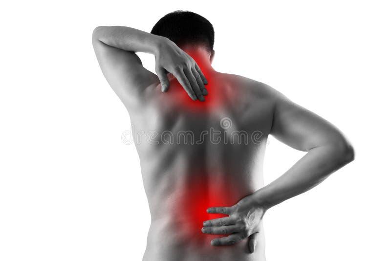 Dolore nel corpo maschio, in uomo con il dolore posteriore, in sciatica e nella scoliosi isolati su fondo bianco, concetto di tra fotografia stock