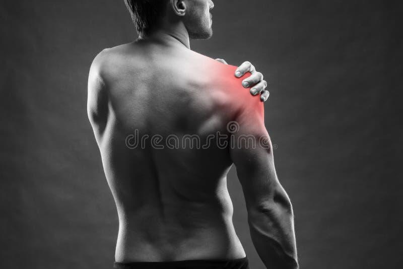 Dolore nella spalla Ente maschio muscolare Culturista bello che posa sul fondo grigio immagini stock libere da diritti