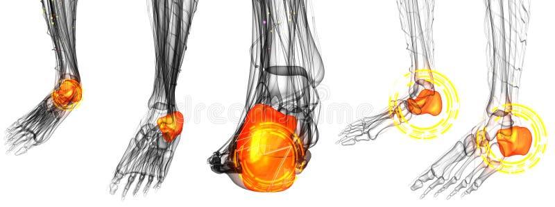 Dolori articolari del piede umano royalty illustrazione gratis