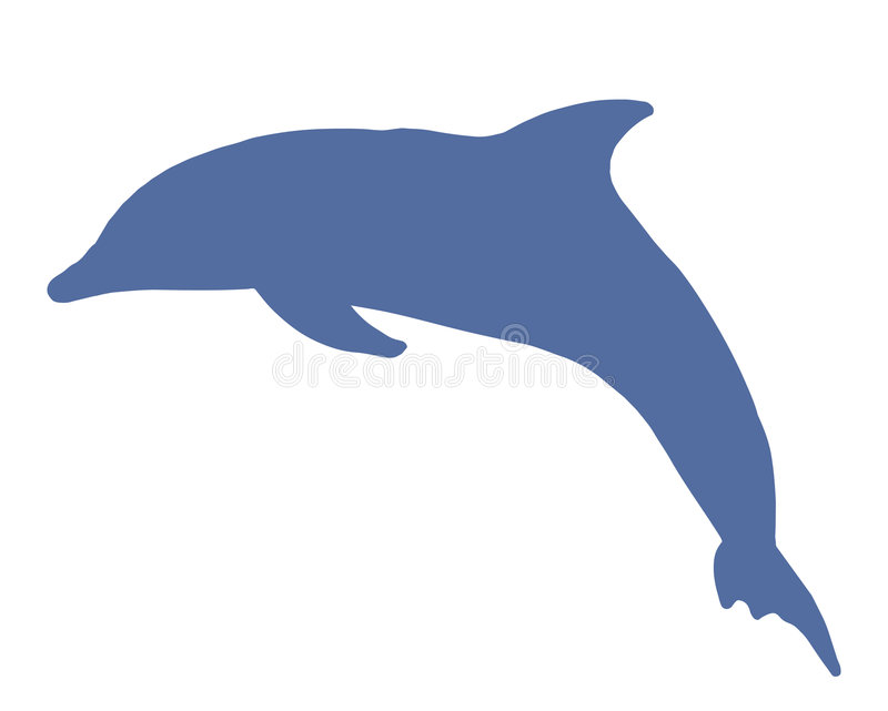 Dolphin royalty free illustration