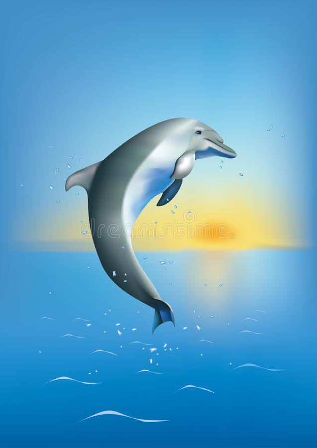 Free Dolphin Royalty Free Stock Photography - 13050327