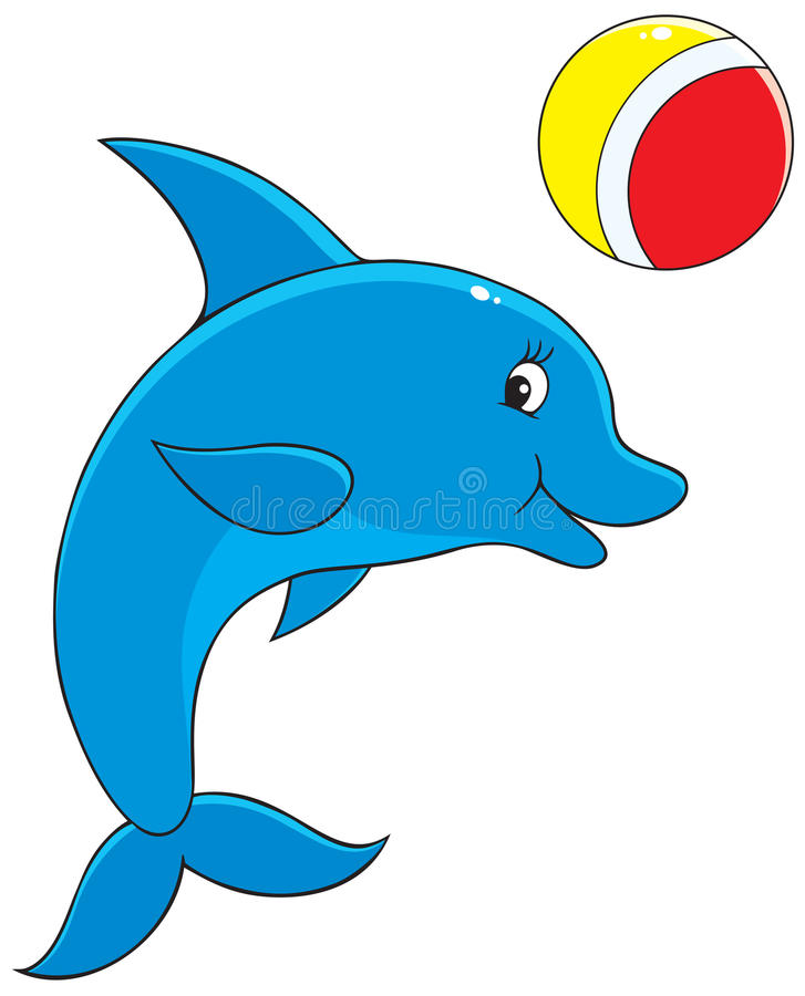 Dolphin vector illustration