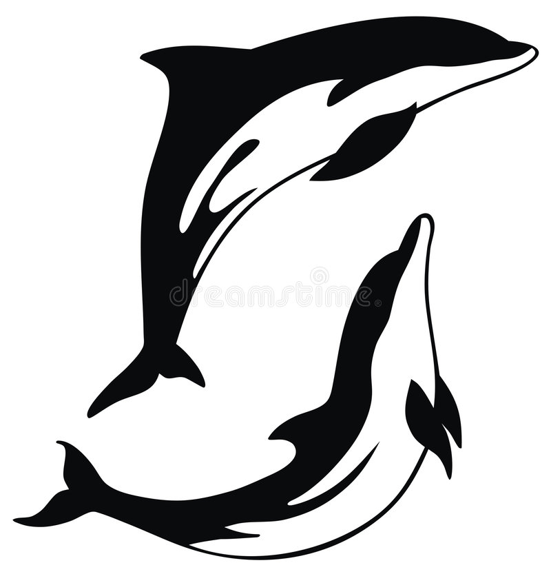 Dolphin stock illustration