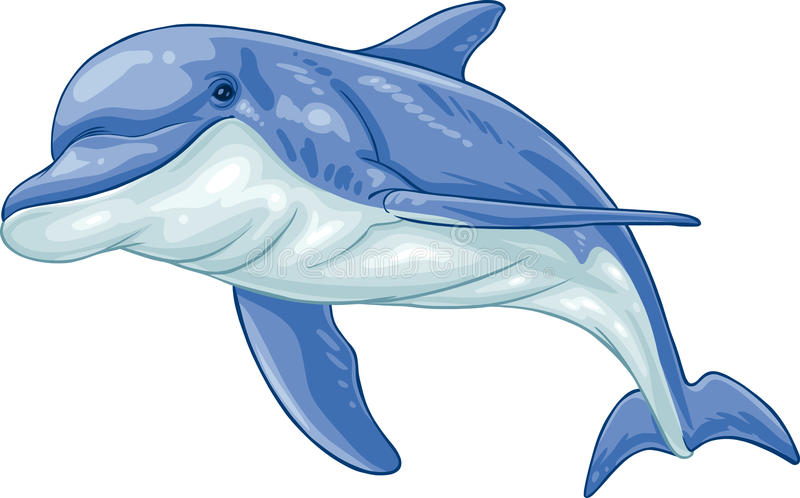 Dolphin. Vector clip art illustration dolphin. Hand drawn artwork in loose, expressive style with NO gradients or blends