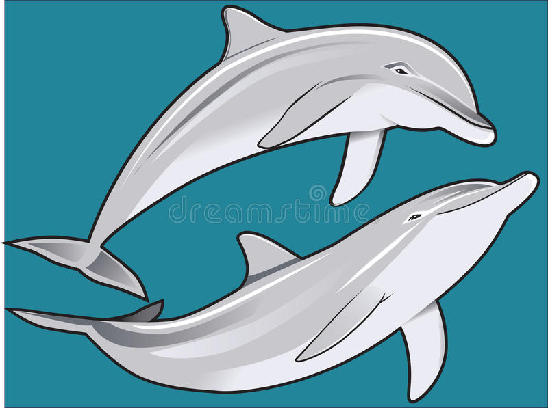 Download Dolphin Duo stock vector. Illustration of swimming, blue - 33727468