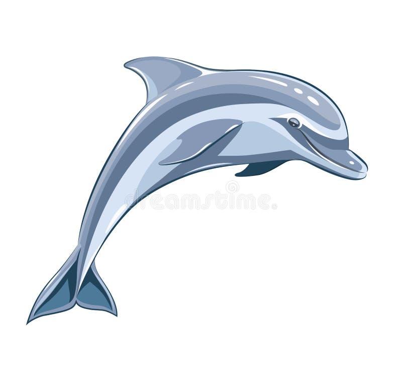 Dolphin. Eps8 illustration. on white background royalty free illustration