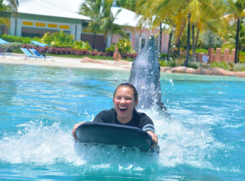 Dolphin Experience. Young teenage girl laughing as she is pushed on a knee board by a dolphin