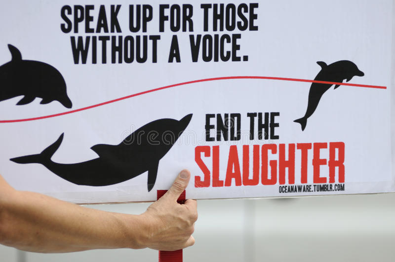 Download Dolphin hunting protest. editorial stock image. Image of ignore - 26393109