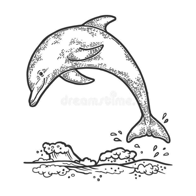 Dolphin jumping sketch engraving vector royalty free illustration