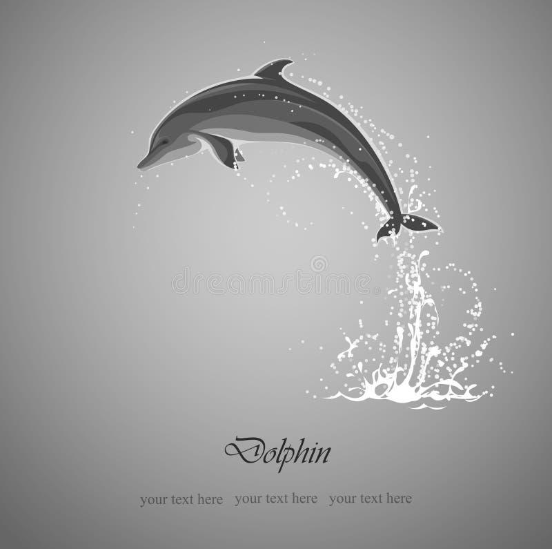 Free Dolphin Jumps Stock Photos - 34161983