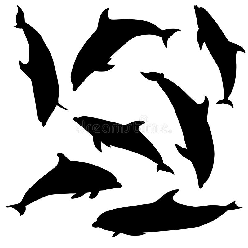 Dolphin. Seven different . royalty free illustration