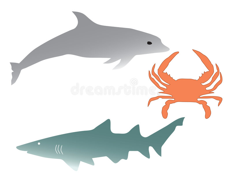 Dolphin, shark and cancer stock illustration