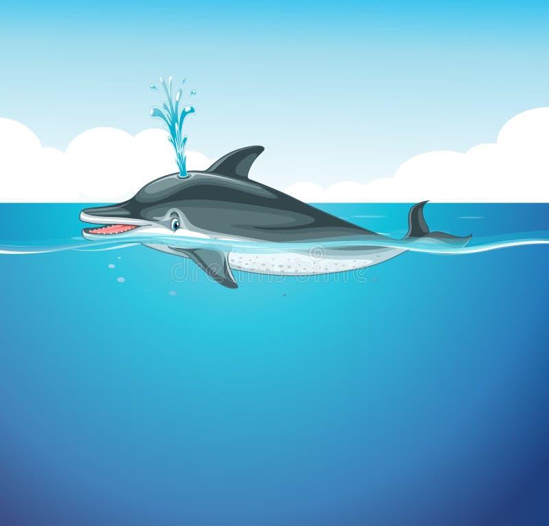 Dolphin splashing water in the sea stock illustration