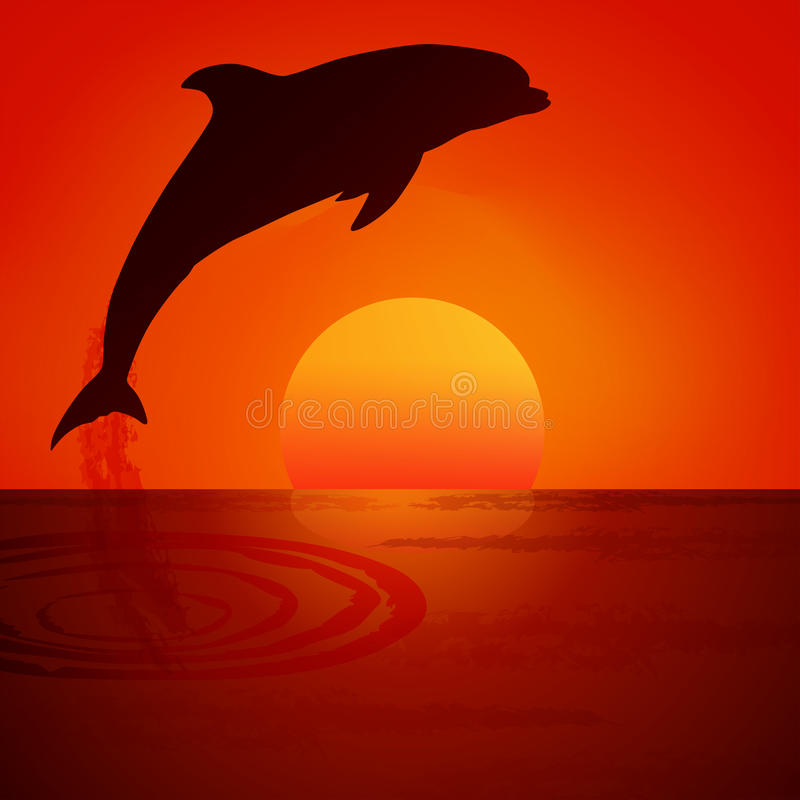 Dolphin at sunset. Vector illustration. vector illustration